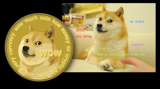 wow much coin how money so crypto plz mine v rich very ...